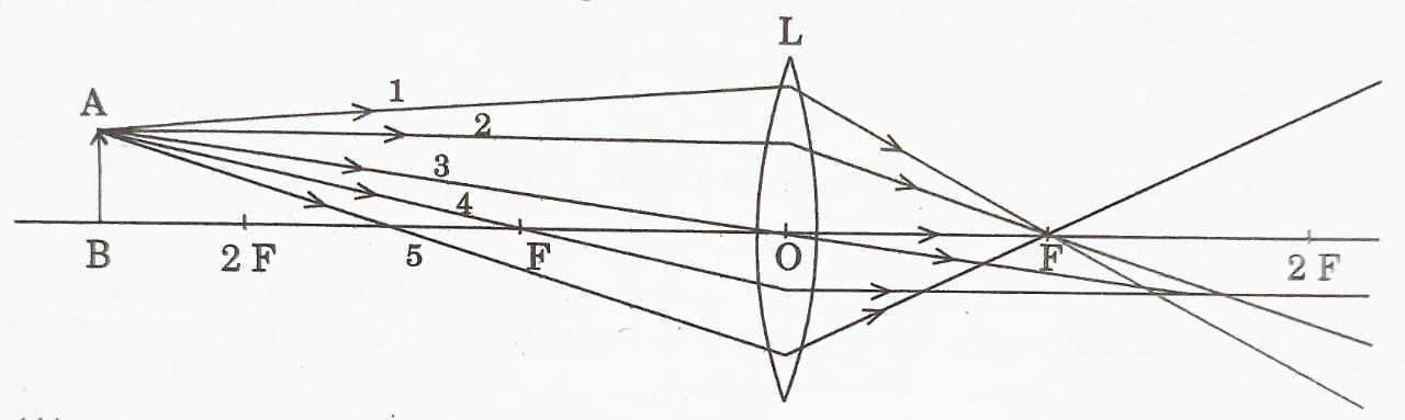 convex lens mcq