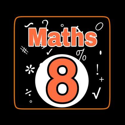 class 8 maths