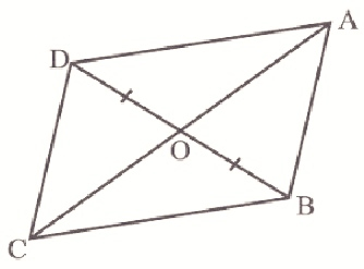 Class 9 Areas and Parallelograms and Triangles
