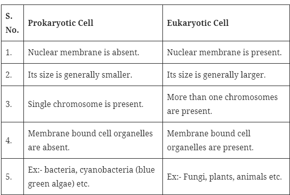 prokaryotic-eukaryotic-cell
