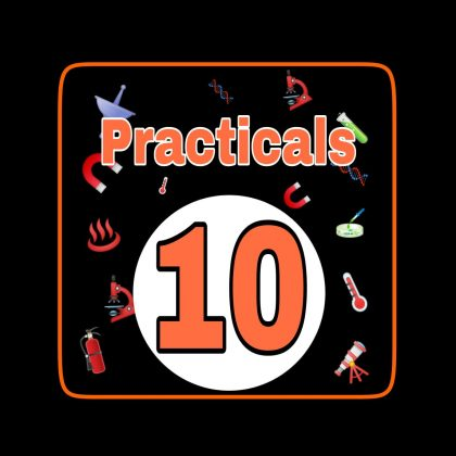 class-10-practicals